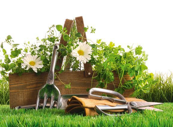 Οι εργασίες της Ανοιξης στον κήπο