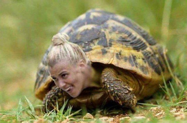 Γελάει το διαδίκτυο με τη «χελώνα» Λάουρα
