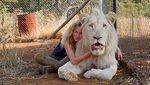 Το Kορίτσι και το Λιοντάρι