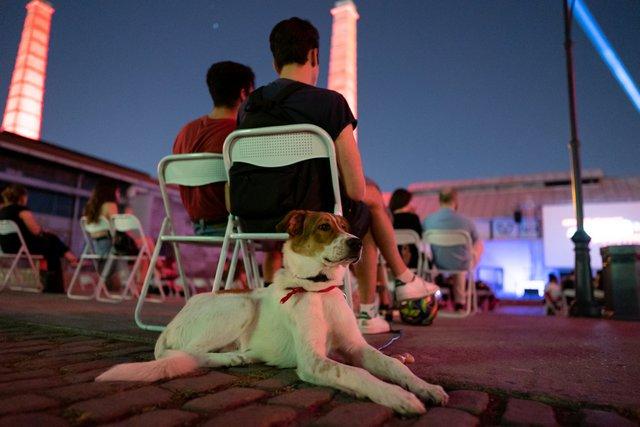 Εντυπωσιακό διήμερο με Αλμοδόβαρ και «Rocky Horror» στην Τεχνόπολη του Δήμου Αθηναίων [photos]