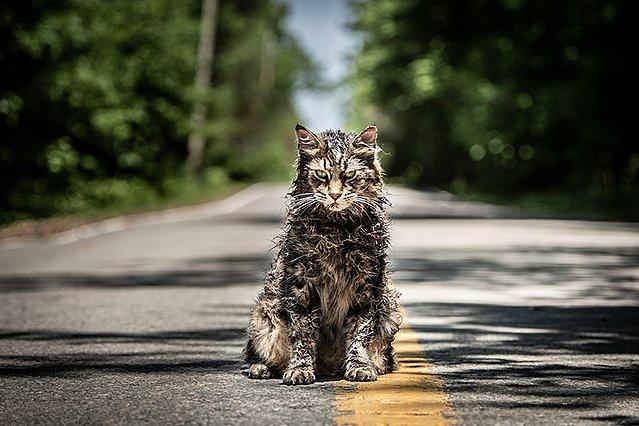 Το «Pet Sematary» του Στίβεν Κινγκ «ζωντανεύει» ξανά στη μεγάλη οθόνη με νέο τρέιλερ