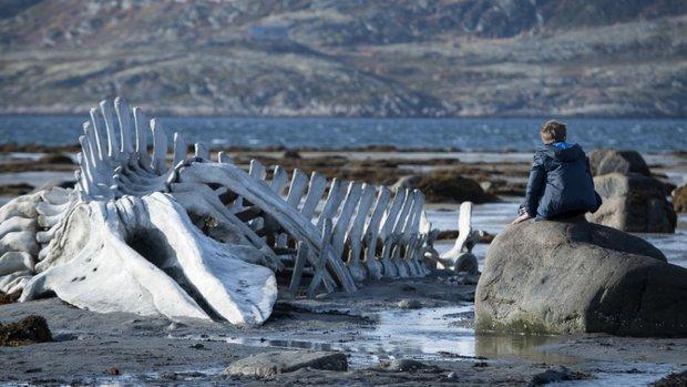 Η Ρωσία «πολεμά» την οσκαρική υποψηφιότητα του «Leviathan»